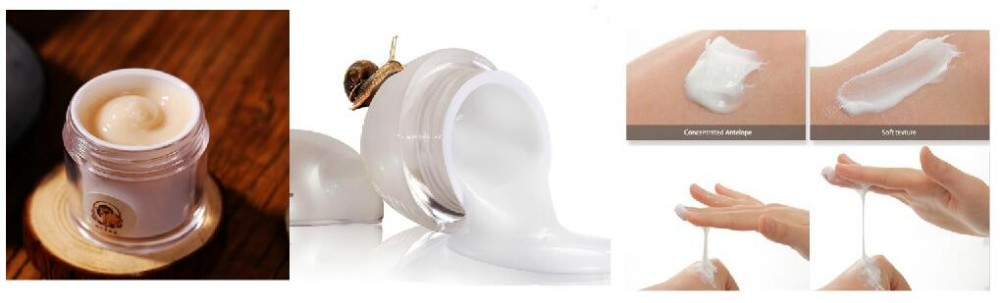 Snail Recovery Serum