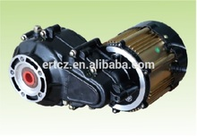 1000 watt dc brushless gear motor