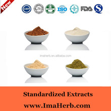 Best quality antrodia camphorata extract triterpene