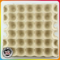 Disposable 30 Pack Paper Egg Trays