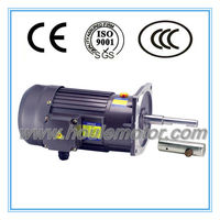 HOULE feeding system induction gear motor AC gear motor with reducer single stage gearboxes