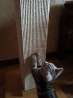 cat tree parts Sisal Cat scratcher Post -hot selling Pet products 2016