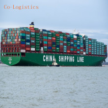Best shipping freight service sea shipping china to New Zealand