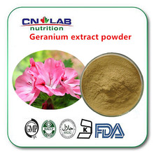 Bulk wild bulk Pelargonium hortorum extract/geranium extract with benefits