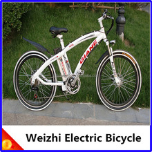 Weizhi Electric Bicycle / 250W Brushless Motor / Tianyang Nice e-bike / Best Price