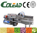 Hot sales automatic leaf vegetable and fruit washer from Colead