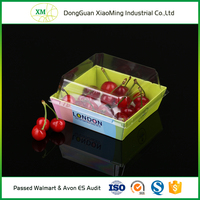 Factory price transparent christmas fruit and vegetable plastic packing trays