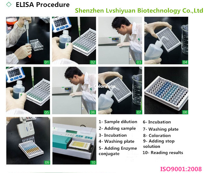 LSY-30036 Brucellosis antibody ELISA veterinary kits Test for cattle and sheep