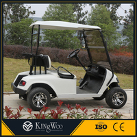 Small 2 seat electric really cheap golf cart for sale