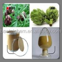 100% natrual high quality herbal medicine artichoke extract(cynarin 2.5% 5% )