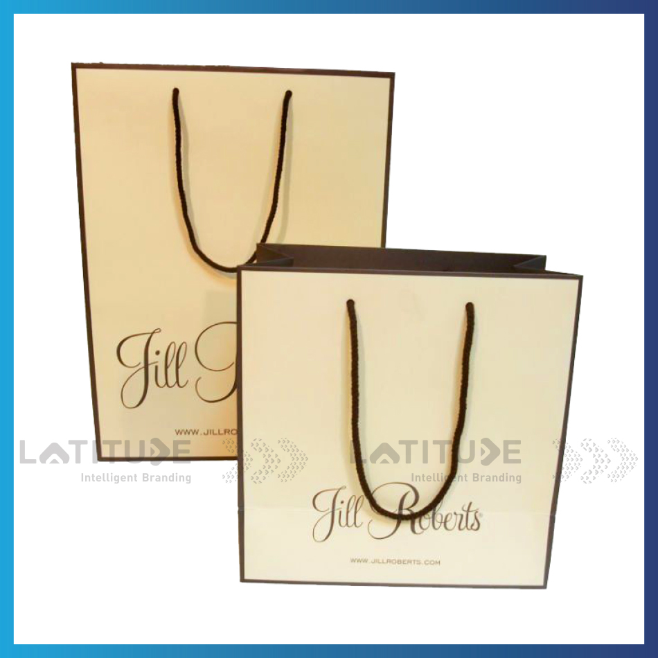 High End Matt Lamination Fancy Cosmetic Carrier Paper Gift Bags