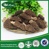 2015 New Dried Black Morel Mushroom/ Honeycomb Morel