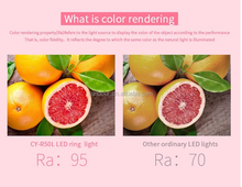 High quality Stepless adjustment round 480 led video light bi-color camera ring light CY-18