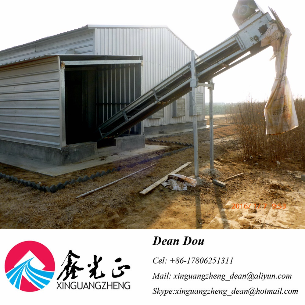 Automatic Control Equipment Building Steel Structure Poultry House Manufacturer