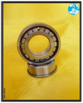 Cylindrical Roller Bearing N1005