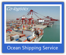 China professional overseas shipping container to Basra Iraq -------Sophie