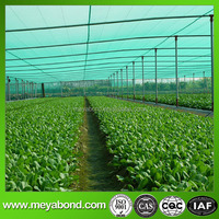 roll up greenhouse insect nets, agricultural anti insect net
