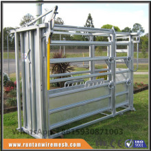 Hot sale galvanized standard cattle crush