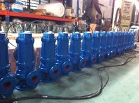 SUBMERSIBLE SEWAGE PUMP FOR HANDLING SEWAG, WASTE WATER IN DYEING FACTORY