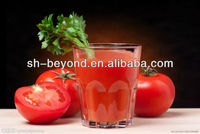 complete set of tomato juice processing line