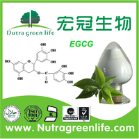 EGCG 100% Natural Green Tea Extract Powder Polyphenols 20%-98% EGCG 10%-95% Catechins 10%-90% HPLC
