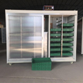 High efficiency bean sprout machine/mung bean sprout growing machine/hydroponic bean sprouts growing system