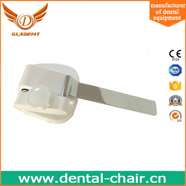 dental chair headrest with stents