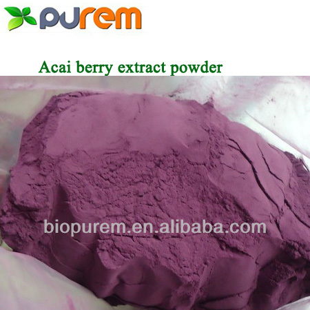 Spray Dried Acai Berry Powder for loss weight