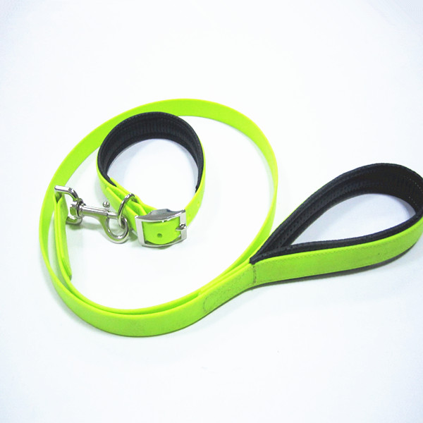green yellow collar leash.jpg