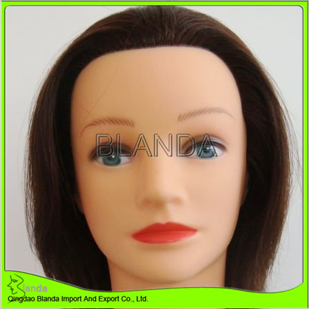 New product different styles mannequin trainning head