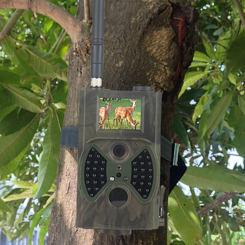 game trail camera 1.jpg