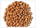 wholesale peanuts
