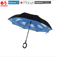 Double Layer Reverse Umbrella Open/Close In The Narrowest Space Creative Graphic Windproof Car Umbrella