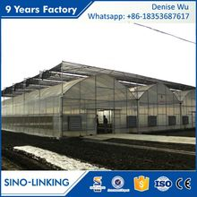 SINOLINKING Best Price polytunnel green houses for agriculture greenhouse for sale