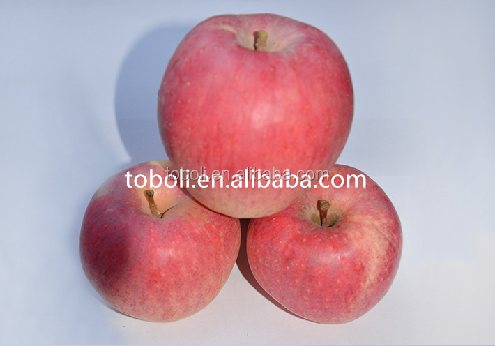 18kg cartons packing for red FuJi apples fruits in 70% redness