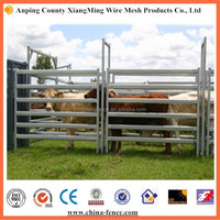 ISO9001/ SGS cheap cattle panels / heavy duty cattle crush / Galvanized Steel Corral Rail/bars/hurdles For Horse/cattle