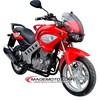 High Quality 4 Stroke 250cc Motorcycle for Sale (YY250-5A)