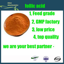 GMP factory supply top quality folic acid/ vitamin B9/ cas no.59-30-3 with reasonable price