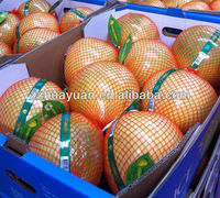 Fresh red pomelo