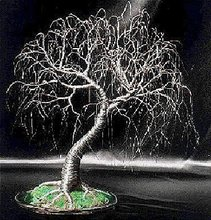 Exposed Roots, wire tree sculpture