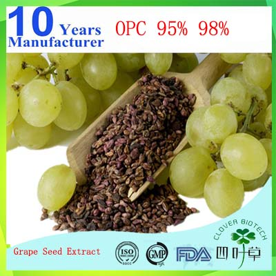 pure french grape seed extract cream tanin for cosmetics