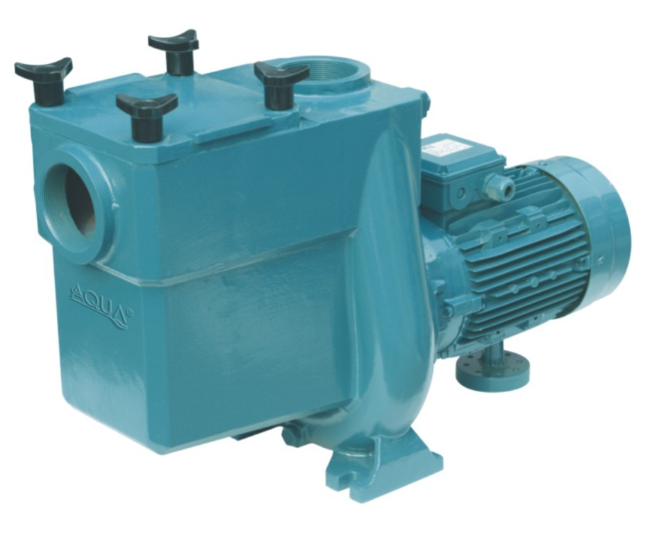 Dc Brushless Motor Swimming Pool Pump For Swimming Pool
