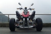 Cool Cheap ATV for Adults 300cc
