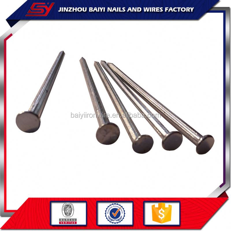 Hot Sale Round Stainless Steel Concrete Nail