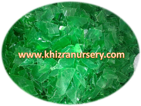 Washed Pet Green Bottle flakes