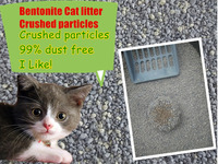 cats application 100% bentonite clumping cat litter dust free