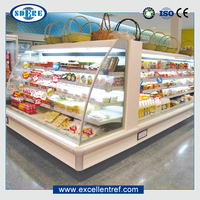 DHM2516O1 Energy Drink Curtain Freezer Used as Display Chiller In Convenience Store