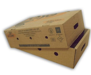 vegetable and fruit strong packing boxes