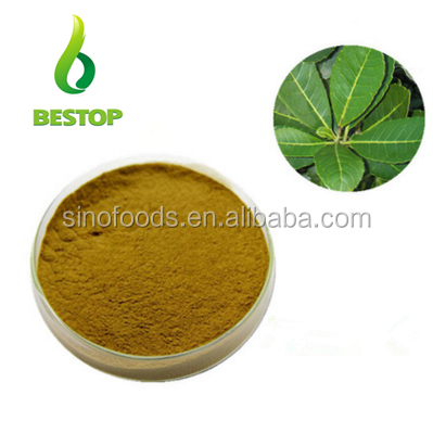Organic Paraguay Tea China Extract Caffein Natural Yerba Mate Extract Powder