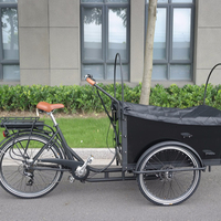 3 wheel electric cargo bike used for carrying kids cargo tricycle/trike model UB-9032E